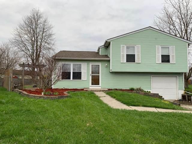 6636 Cedar Court, Galloway, OH 43119 (MLS #220009931) :: Signature Real Estate