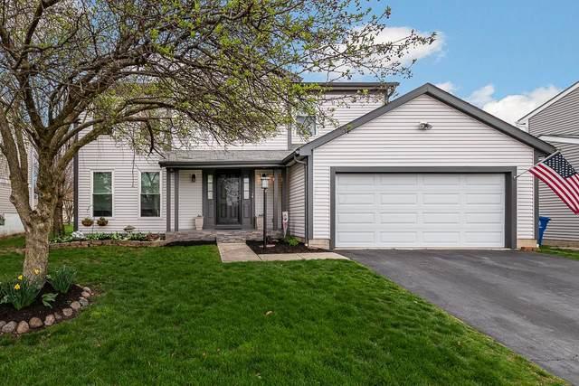 5156 Gillette Avenue, Hilliard, OH 43026 (MLS #220010156) :: Signature Real Estate
