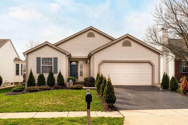 5127 Hilliard Green Drive, Hilliard, OH 43026 (MLS #220010159) :: Signature Real Estate
