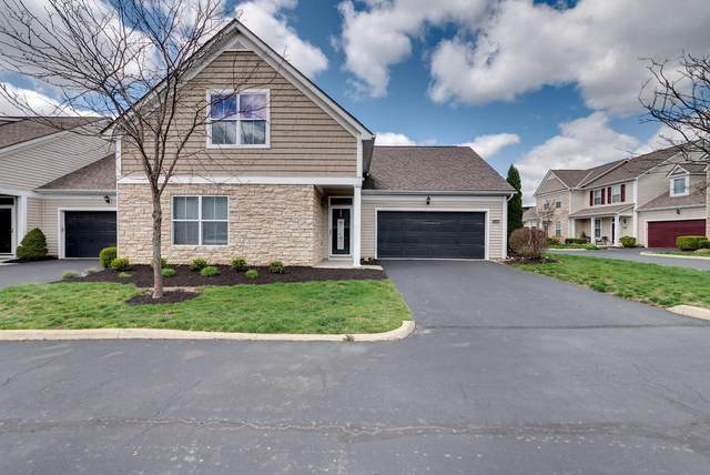 4303 Pillar Drive, Grove City, OH 43123 (MLS #220010273) :: Core Ohio Realty Advisors