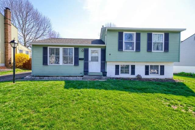 5864 Cairo Road, Westerville, OH 43081 (MLS #220010331) :: Exp Realty