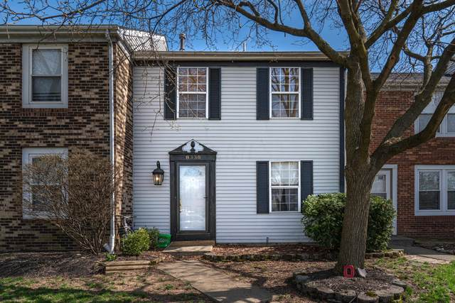 8338 Lariat Court, Powell, OH 43065 (MLS #220010341) :: The Clark Group @ ERA Real Solutions Realty