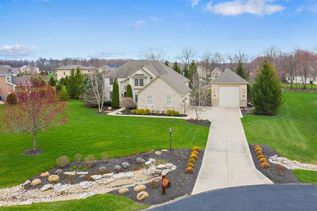 3051 Sophie Court, Galena, OH 43021 (MLS #220010384) :: Exp Realty