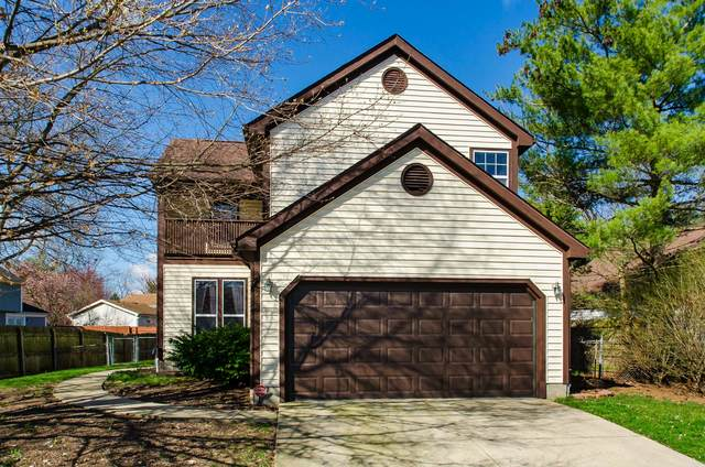 7325 Downey Drive, Columbus, OH 43235 (MLS #220010392) :: Berkshire Hathaway HomeServices Crager Tobin Real Estate