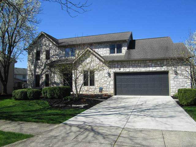 385 Potomac Avenue, Westerville, OH 43082 (MLS #220010514) :: ERA Real Solutions Realty