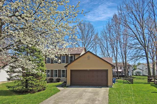 926 Timothy Drive, Columbus, OH 43230 (MLS #220010538) :: RE/MAX ONE