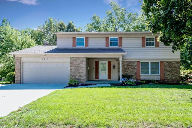 685 Timberlake Drive, Westerville, OH 43081 (MLS #220010647) :: RE/MAX ONE