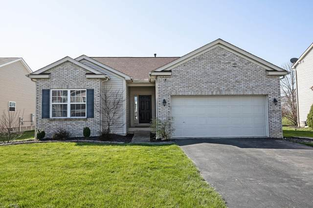 162 Butternut Pass, Commercial Point, OH 43116 (MLS #220010662) :: RE/MAX ONE