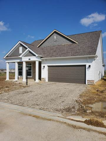 5762 Adalyn Lane, Dublin, OH 43016 (MLS #220010699) :: The KJ Ledford Group