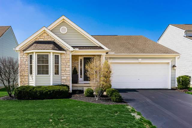 8833 Meadow Grass Lane, Lewis Center, OH 43035 (MLS #220010874) :: Core Ohio Realty Advisors