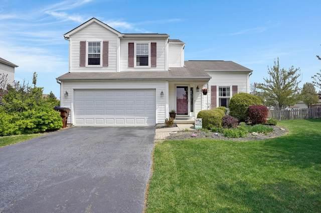688 Hunnicut Drive, Reynoldsburg, OH 43068 (MLS #220012844) :: Keller Williams Excel