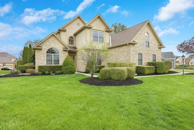 7639 Blue Fescue Drive, Westerville, OH 43082 (MLS #220013079) :: The Holden Agency