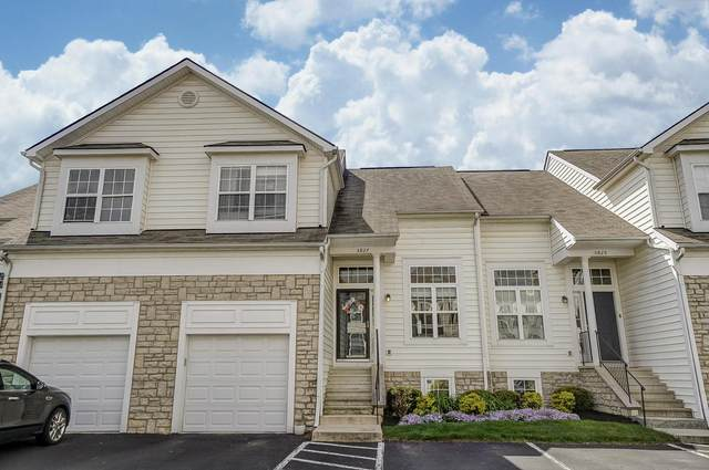 5827 Stallion Drive, New Albany, OH 43054 (MLS #220013493) :: Signature Real Estate