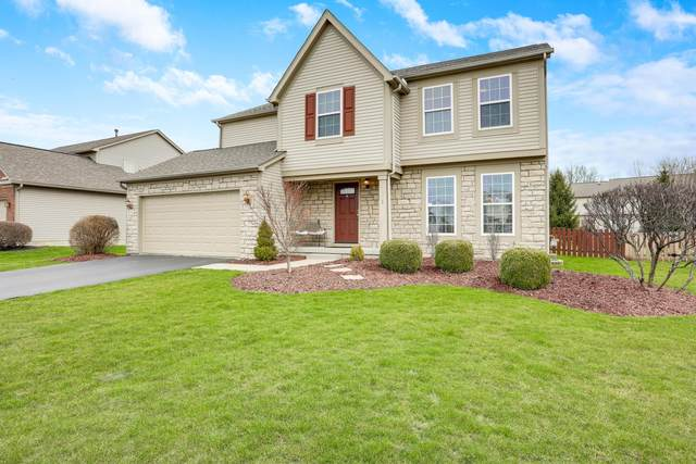 6651 Winesap Place, Westerville, OH 43082 (MLS #220014447) :: Sam Miller Team