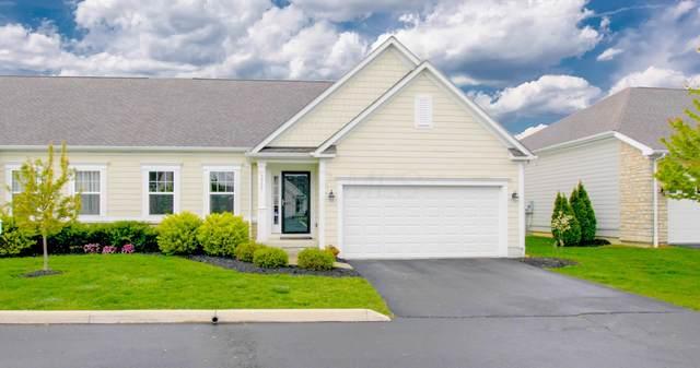 5955 Bell Haven Drive #7, Hilliard, OH 43026 (MLS #220014745) :: Sam Miller Team
