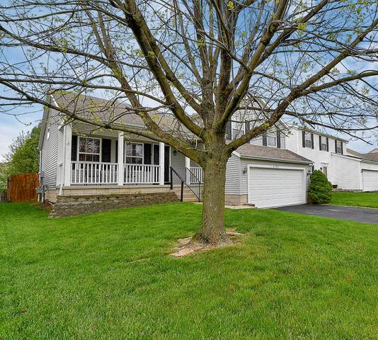 6390 Whims Road, Canal Winchester, OH 43110 (MLS #220014995) :: Sam Miller Team