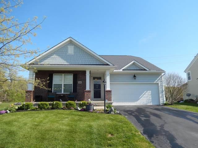 460 Sunbury Meadows Drive, Sunbury, OH 43074 (MLS #220015062) :: Exp Realty