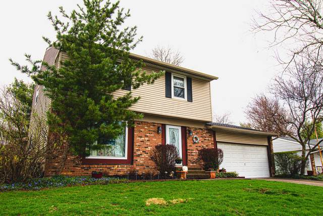 278 Amfield Court, Columbus, OH 43230 (MLS #220015626) :: Signature Real Estate