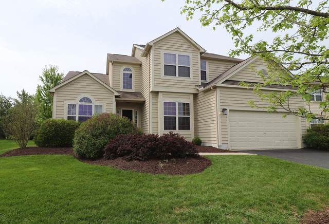 329 Safreed Way, Powell, OH 43065 (MLS #220015654) :: RE/MAX ONE