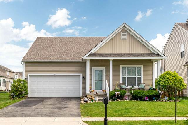 584 Cedar Run Drive, Blacklick, OH 43004 (MLS #220015679) :: Exp Realty