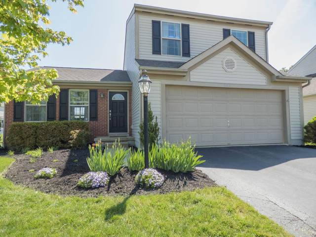 1144 Streamside Drive, Blacklick, OH 43004 (MLS #220015778) :: Signature Real Estate