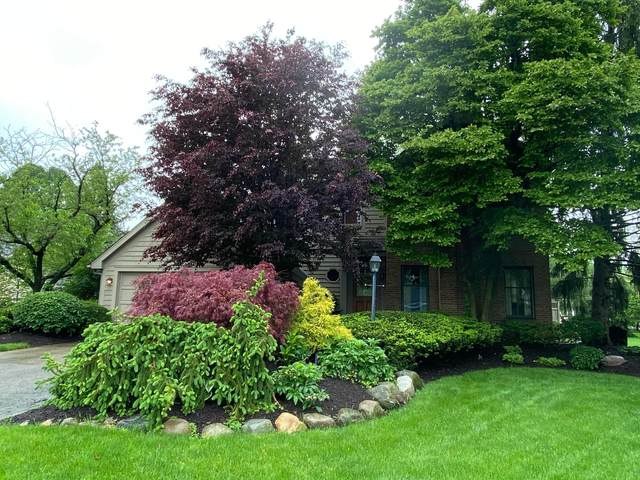 3288 Scioto Run Boulevard, Hilliard, OH 43026 (MLS #220015817) :: Susanne Casey & Associates
