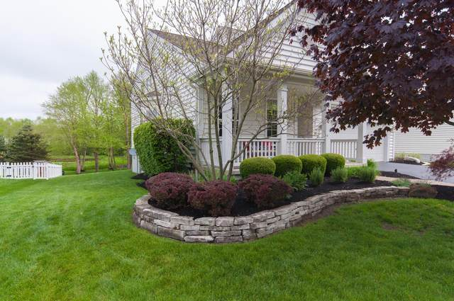 6380 Skipping Stone Drive, New Albany, OH 43054 (MLS #220015925) :: Exp Realty
