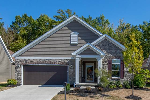 8061 Summitpoint Place, Lewis Center, OH 43035 (MLS #220015931) :: Dublin Realty Group