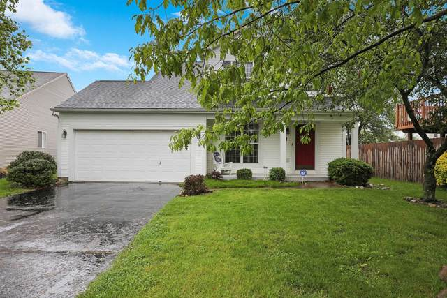 6318 Whims Road, Canal Winchester, OH 43110 (MLS #220015935) :: Sam Miller Team