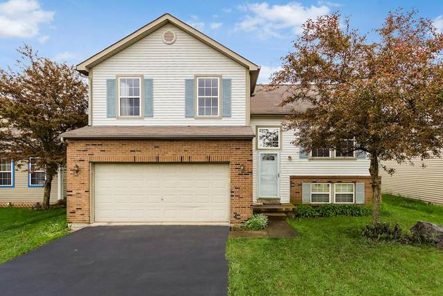 156 Hardman Drive, Galloway, OH 43119 (MLS #220015947) :: Berkshire Hathaway HomeServices Crager Tobin Real Estate