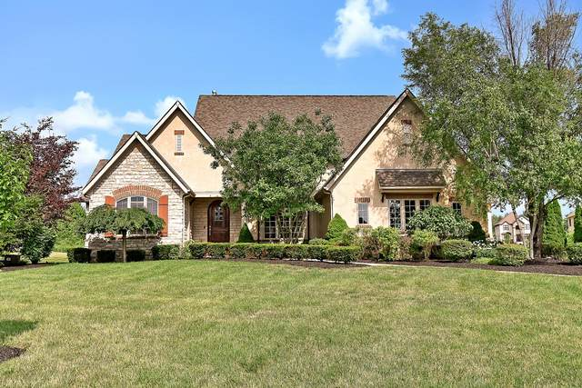 13864 Leone Court, Pickerington, OH 43147 (MLS #220015956) :: RE/MAX ONE