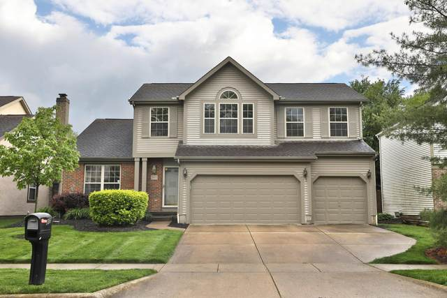 805 Lynnfield Drive, Westerville, OH 43081 (MLS #220016039) :: The Willcut Group
