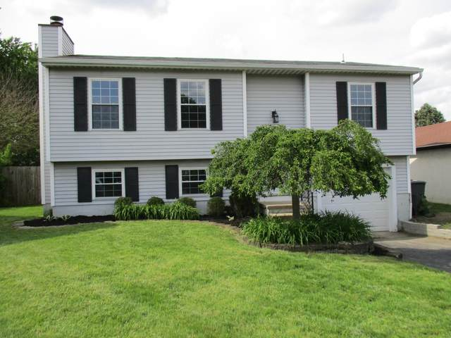 8229 Laramie Place, Powell, OH 43065 (MLS #220016107) :: Berrien | Faust Group