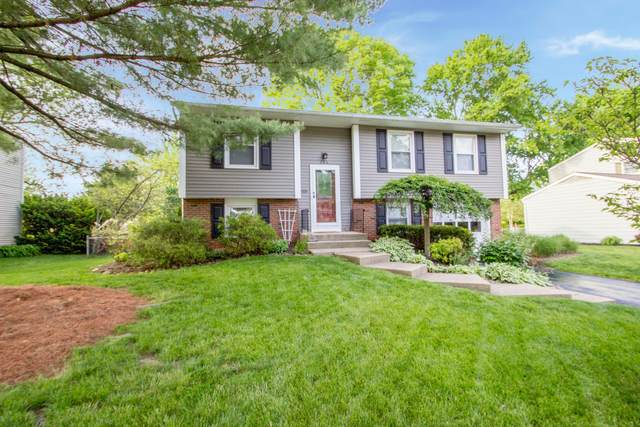 266 Oak Hill Drive, Westerville, OH 43081 (MLS #220016109) :: Exp Realty
