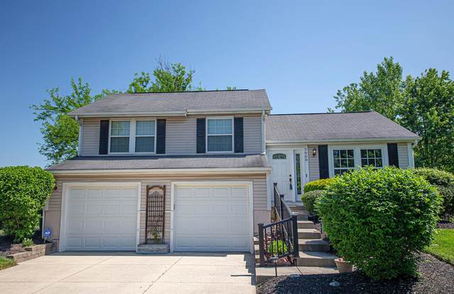 7908 Sudeley Court, Westerville, OH 43081 (MLS #220016266) :: Signature Real Estate