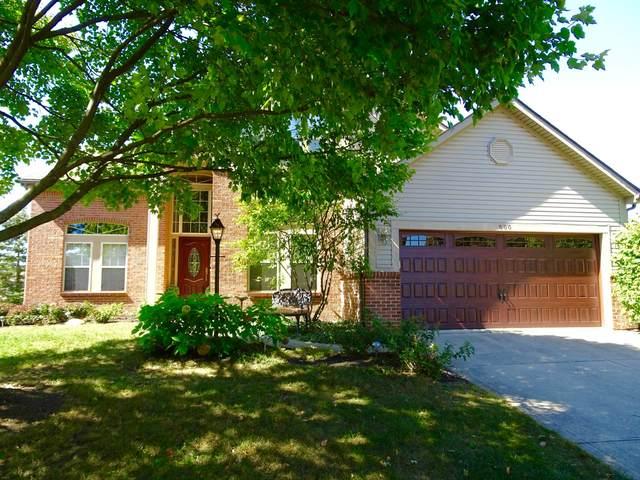 600 Ceresia Court, Pickerington, OH 43147 (MLS #220016381) :: Berrien | Faust Group