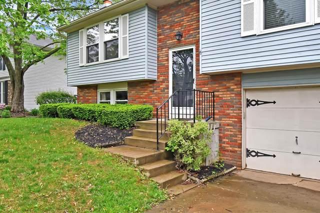 6465 Hurlingham Road, Reynoldsburg, OH 43068 (MLS #220016419) :: ERA Real Solutions Realty