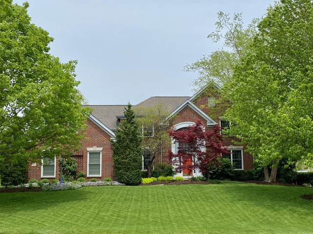 6497 Spinnaker Drive, Lewis Center, OH 43035 (MLS #220016453) :: Sam Miller Team