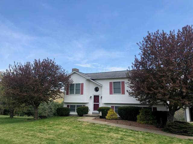 6172 Limerick Road, Jackson, OH 45640 (MLS #220016457) :: The Holden Agency