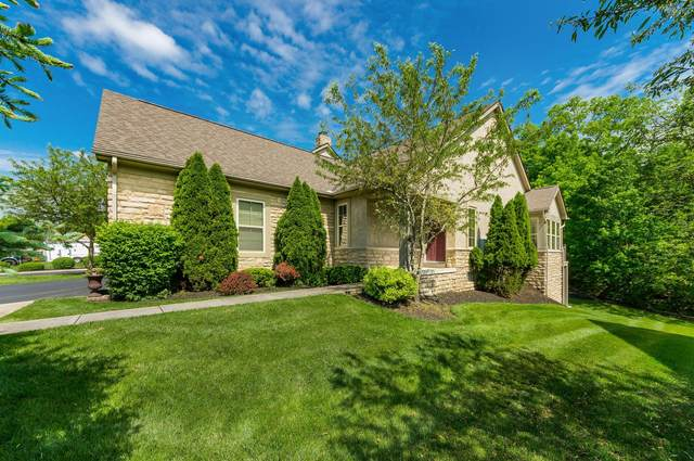 1002 Arcadia Boulevard, Westerville, OH 43082 (MLS #220016483) :: ERA Real Solutions Realty