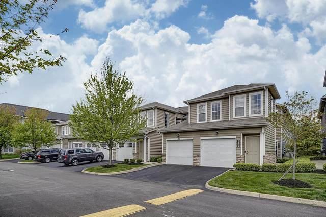 6080 Sowerby Lane, Westerville, OH 43081 (MLS #220016614) :: Sam Miller Team