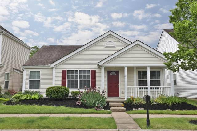 7221 Hillmont Drive, New Albany, OH 43054 (MLS #220016752) :: Berkshire Hathaway HomeServices Crager Tobin Real Estate