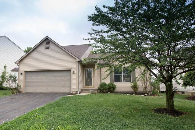 1134 Harley Run Drive, Blacklick, OH 43004 (MLS #220016775) :: ERA Real Solutions Realty