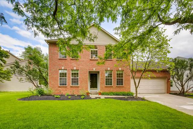 7424 Maynooth Drive, Dublin, OH 43017 (MLS #220016943) :: Huston Home Team