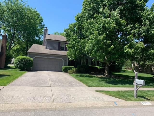 804 Black Gold Avenue, Columbus, OH 43230 (MLS #220017216) :: Susanne Casey & Associates