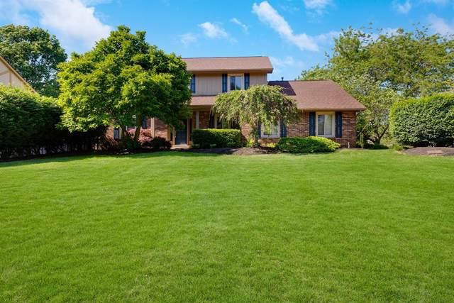 1224 Oak Bluff Court, Westerville, OH 43081 (MLS #220017340) :: Keller Williams Excel
