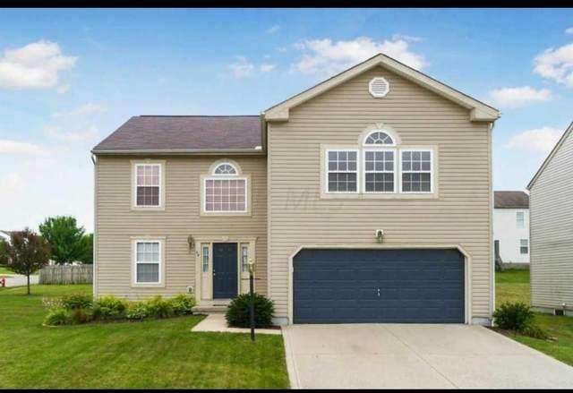 64 Langtree Drive, Pickerington, OH 43147 (MLS #220017379) :: RE/MAX ONE