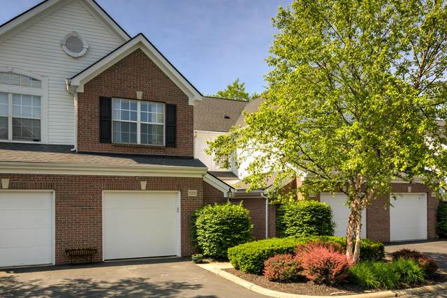 5815 Albany Grove, Westerville, OH 43081 (MLS #220017392) :: Keller Williams Excel
