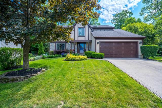 5668 Beaver Head Court, Gahanna, OH 43230 (MLS #220017549) :: RE/MAX ONE