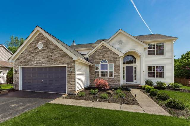 6625 Winesap Place, Westerville, OH 43082 (MLS #220017552) :: Keller Williams Excel